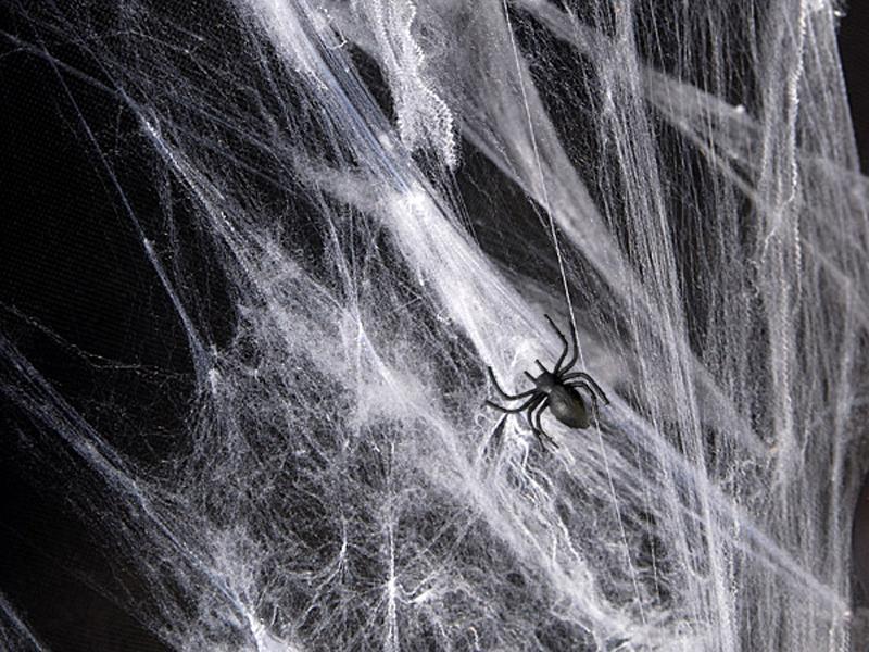 Halloween spindelvæv - 1 stk.