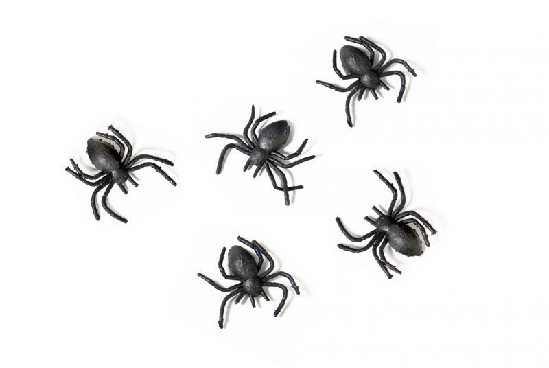 Halloween pynt, sorte edderkopper  - 10 stk.